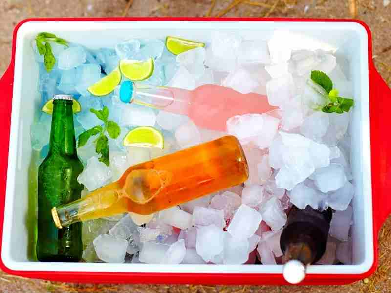 beer bottles stored in an ice box on a camping trip